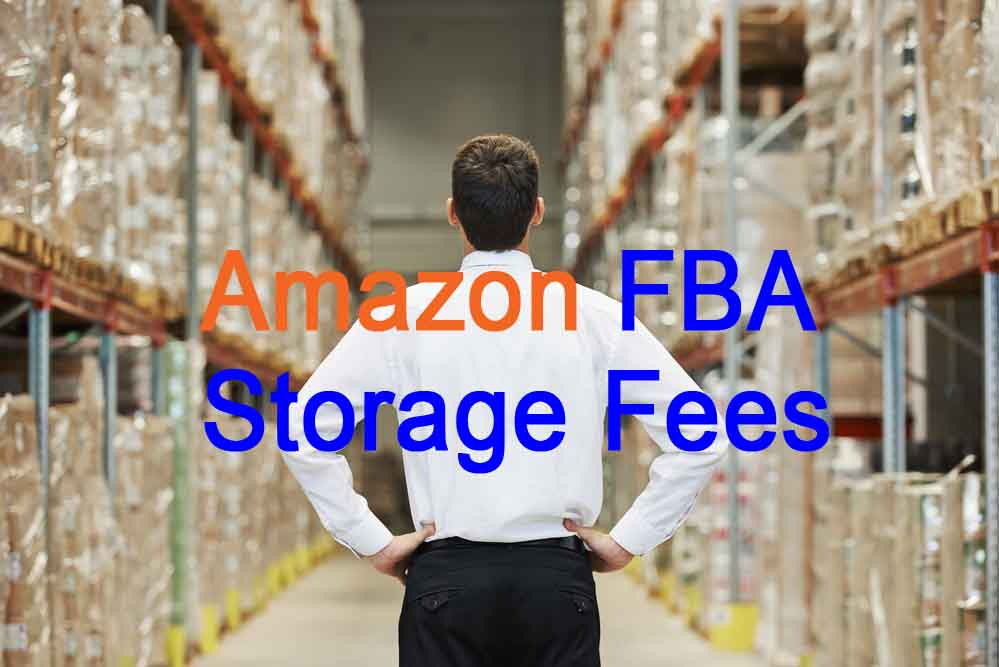avoiding Amazon FBA storage fees