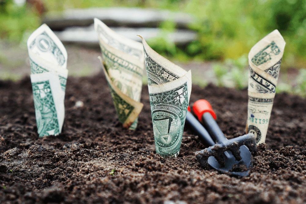 Boost Amazon Cash Flow